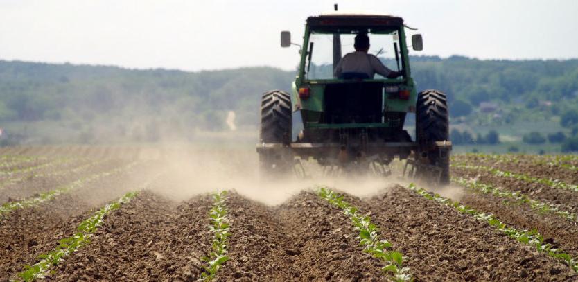 Poljoprivredno zemljište ide u zakup, uskoro i javni oglas