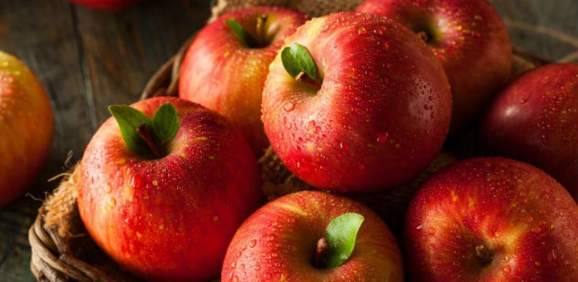 Rusija ukida sankcije BiH: Počinje izvoz jabuka