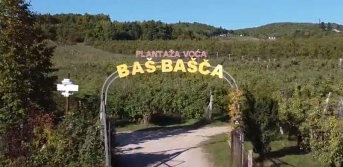 Jedinstvena u BiH: 'Baš-Bašča' organska plantaža voća na 100 dunuma zemlje