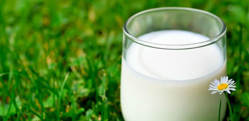 Zašto je mlijeko važno za razvoj djece
