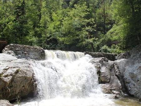 Park prirode Tajan: Jedinstvena zelena oaza u BiH