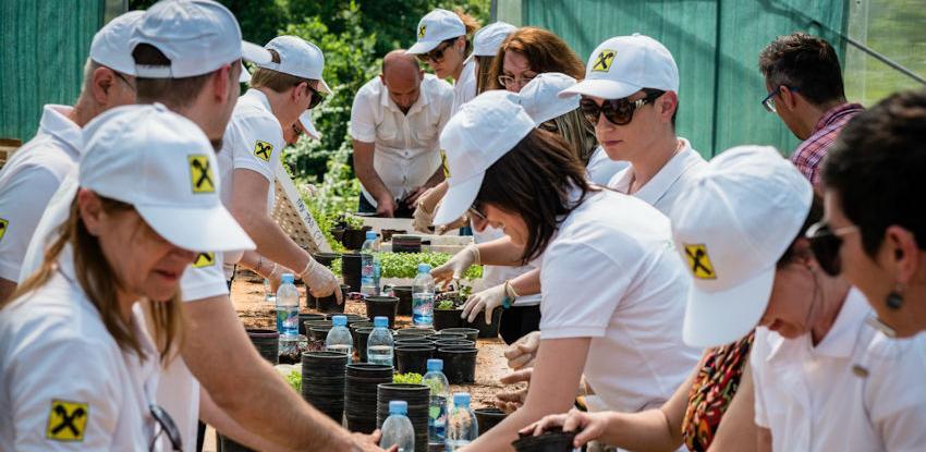 Volonterske aktivnosti menadžmenta Raiffeisen banke