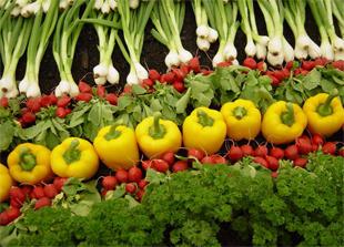 Počinje analiza postojećih propisa o hrani