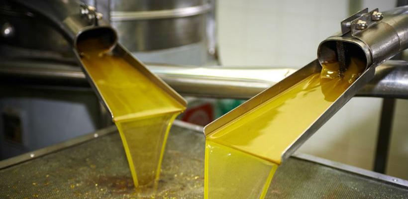 Vrhunsko maslinovo ulje iz Trebinja