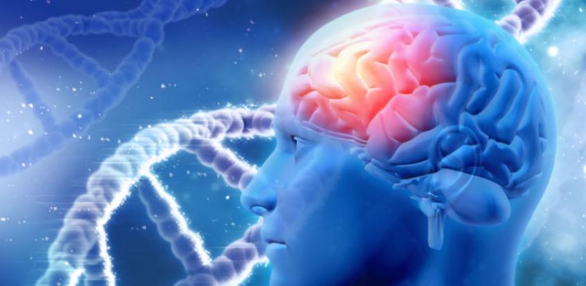 Liječit će se gubitak pamćenja kod starijih ljudi
