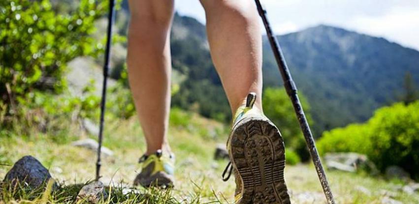 Španska kompanija zainteresovana za uvoz štapova za hodanje iz BiH