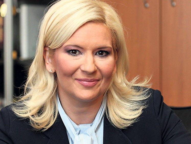 Mihajlović: Stekli se uslovi za gradnju tri dionice Južnog toka