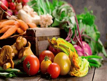 U Kladnju besplatna edukacija i radionica o organskom uzgoju