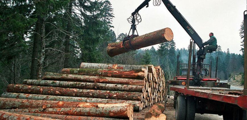 PKFBiH: Što prije uraditi kriterij za raspodjelu sirovine drvoprerađivačima