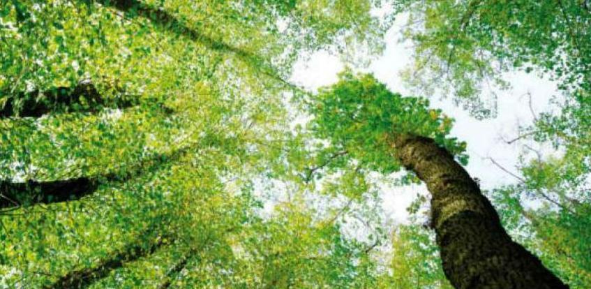 Usaglašen sporazum o saradnji Fonda za zaštitu okoliša i Vlade KS