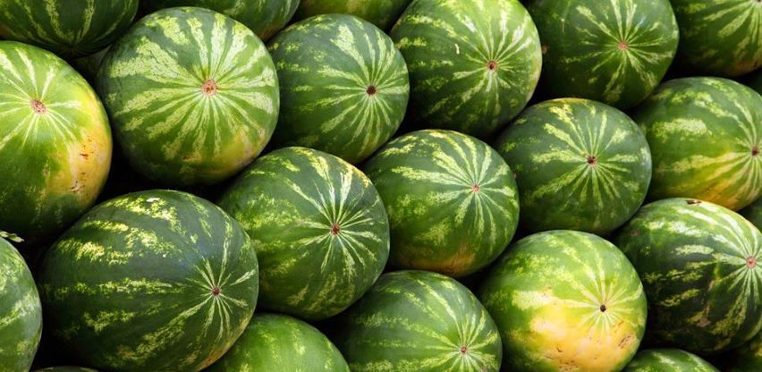 Prinosi lubenice u BiH rekordni, problem plasman na tržište