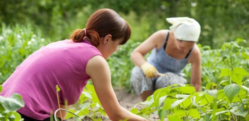 100.000 KM za biznise žena iz marginaliziranih grupa u Živinicama