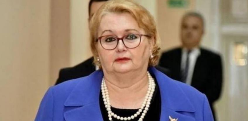 """Turković: Srbija rizikuje ulaskom u projekt izgradnje hidroelektrane """"Buk Bijela"""""""