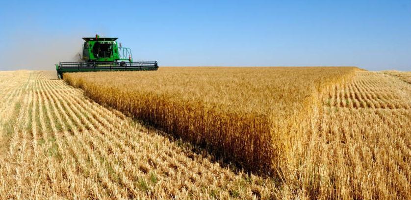 Sankcije Kataru prilika za bh. poljoprivrednike