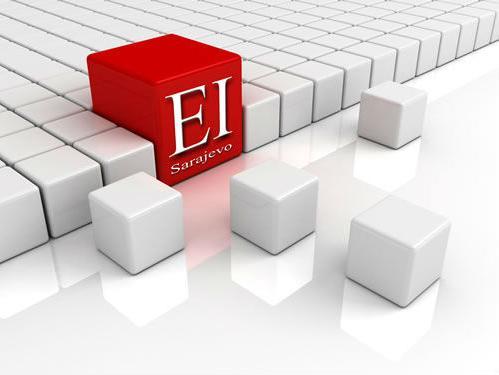 EIS - Rado viđen kao partner brojnih istraživačkih instituta u Evropi