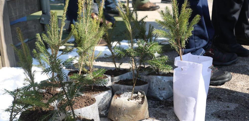 """Ozvaničen početak realizacije projekta """"Sarajevo Afforestation"""""""