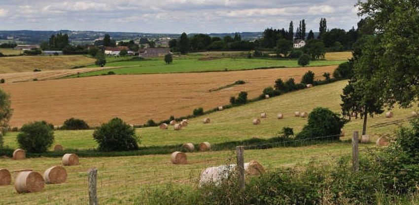 Objavljen Javni poziv: 1,95 miliona KM za razvoj ruralog tržišta