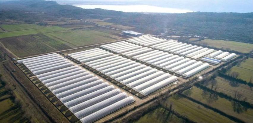 VOLI u poljoprivrednu proizvodnju uložio 2,38 miliona eura