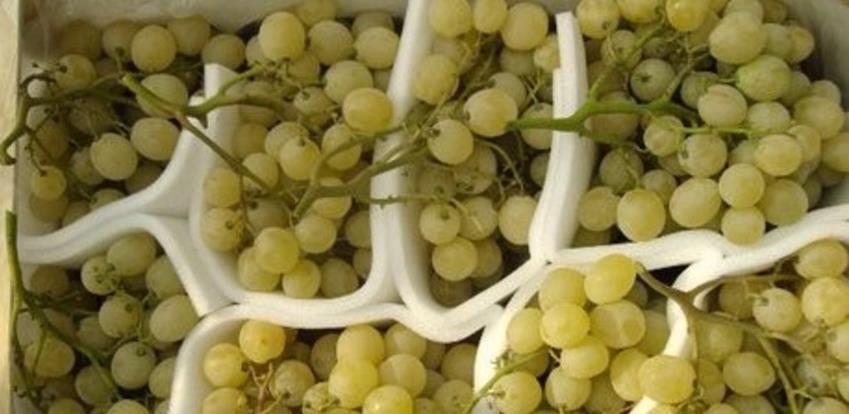 U RS zabranjen uvoz skoro 12,5 tona grožđa iz Albanije