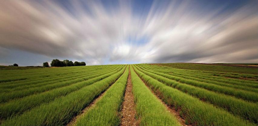 U RS-u isplaćeno više od 2 miliona KM za poljoprivredne podsticaje