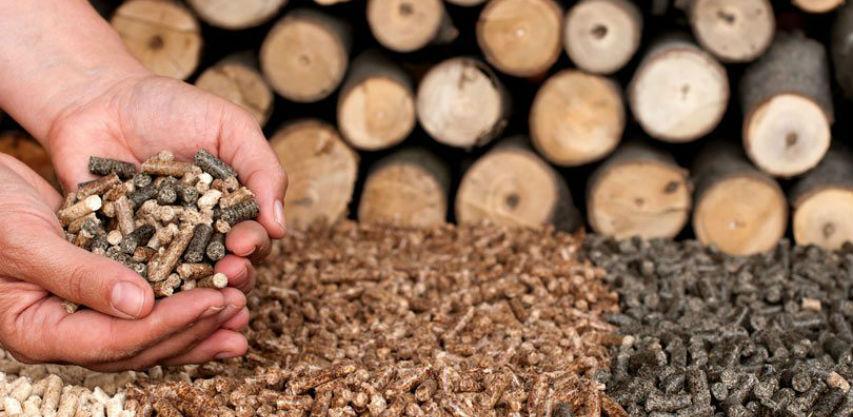 Na debelom minusu vrela samo cijena drva
