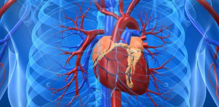 Srčani udar se može predvidjeti mjesec dana prije