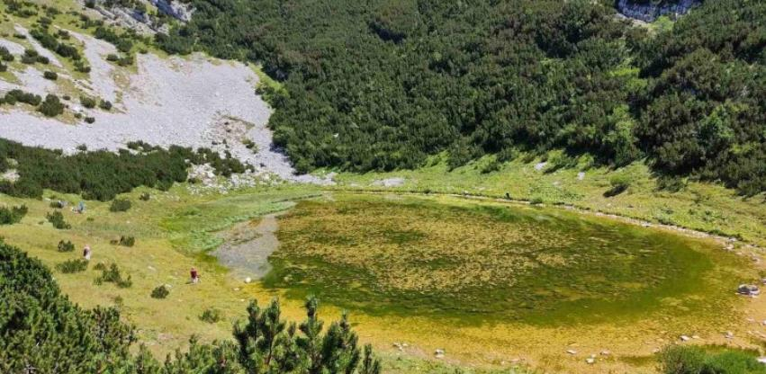 Lokvanjsko jezero, ukras Bjelašnice, nestaje pod barskim biljem