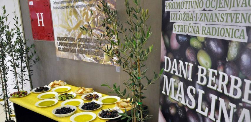 Godišnja potrošnja maslinovog ulja u BiH svega 0,12 litara po glavi stanovnika
