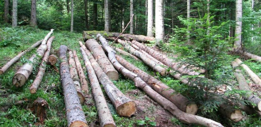 Naknade za šume i građevinsko zemljište trošene za tekuće poslovanje