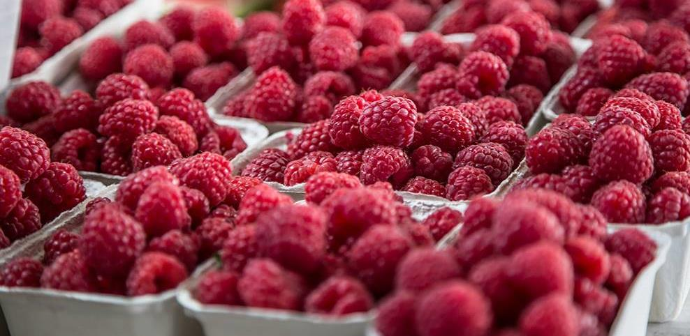 Otkazani Dani maline u Bratuncu, raspisan konkurs za izbor najboljeg uzgajivača
