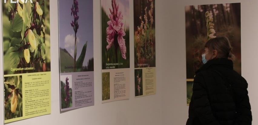 Zemaljski muzej obilježio 133 godine uz Hagadu, orhideje i kafu (VIDEO)