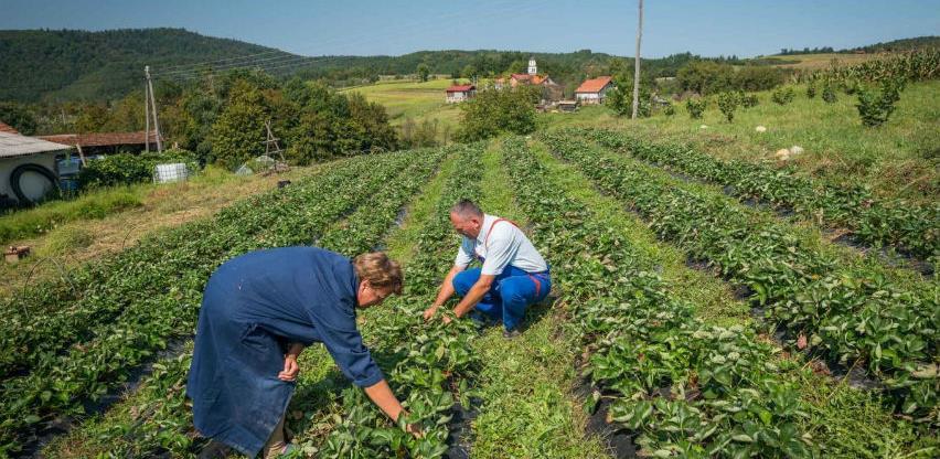 BiH mora koristiti mehanizme zaštite domaće proizvodnje
