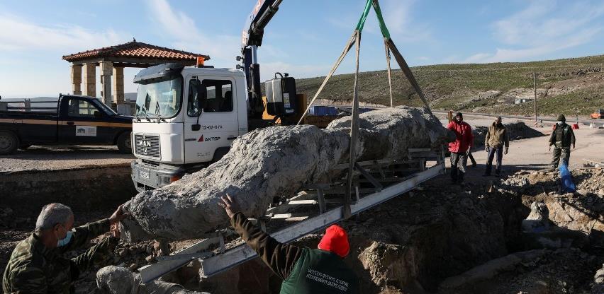 Jedinstveno otkriće: Pronašli očuvano okamenjeno stablo staro 20 milijuna godina