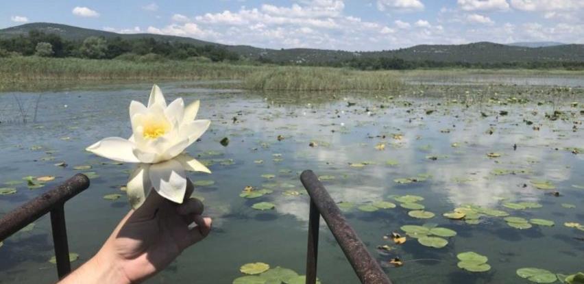 Kreće oživljavanje Parka prirode Hutovo blato
