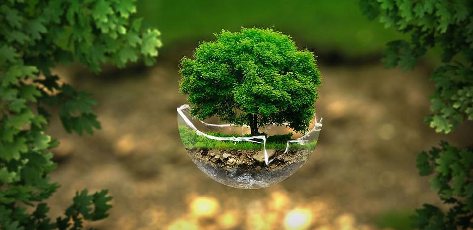 Ovo su firme koje će raditi na jačanju javne svijesti o značaju zaštite okoliša