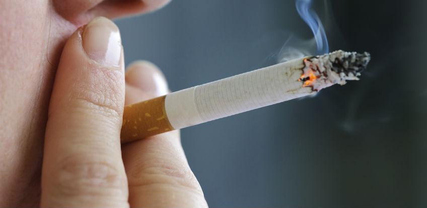 Hadžić: Austrija odustala od potpune zabrane pušenja u objektima