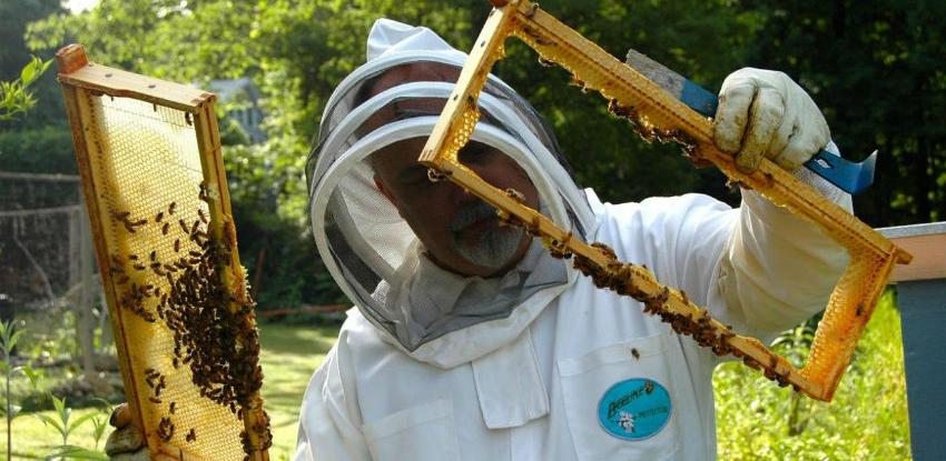 Pčelari i malinari udružili snage, rezultati već vidljivi