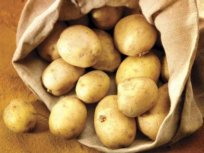 Pripreme za proizvodnju:Fabrika pomfrita zainteresovana za otkup krompira