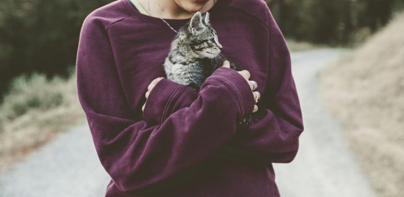 Da li su vlasnici mačaka dugovječniji