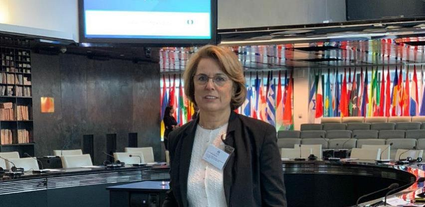 Köpruner: Zbog koronavirusa realni sektor u BiH je u jako teškoj situaciji