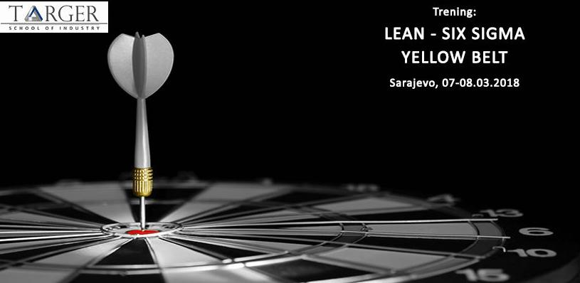 Lean - Six Sigma Targer Engineering & Consulting usluge