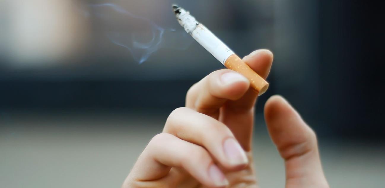 Kontrola duhana je neophodna za EU integracije