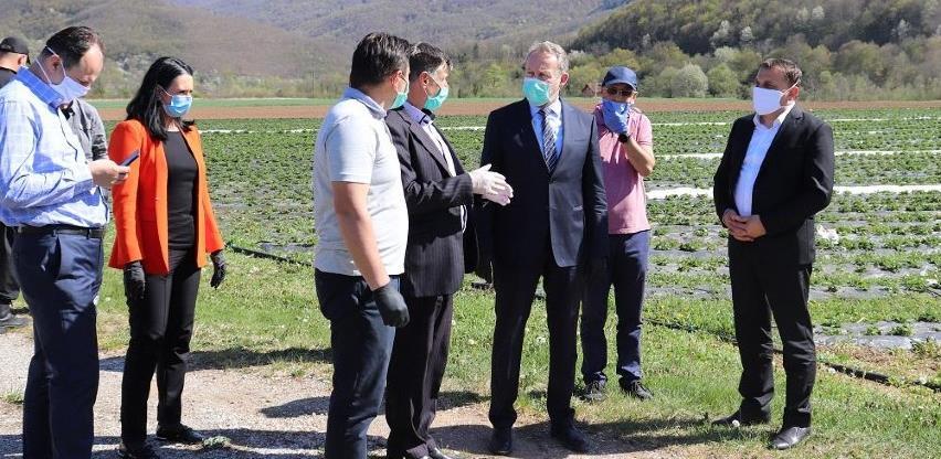 Agro ideja planira proizvodnju kiselog voća i povrća za bh. i švicarsko tržište