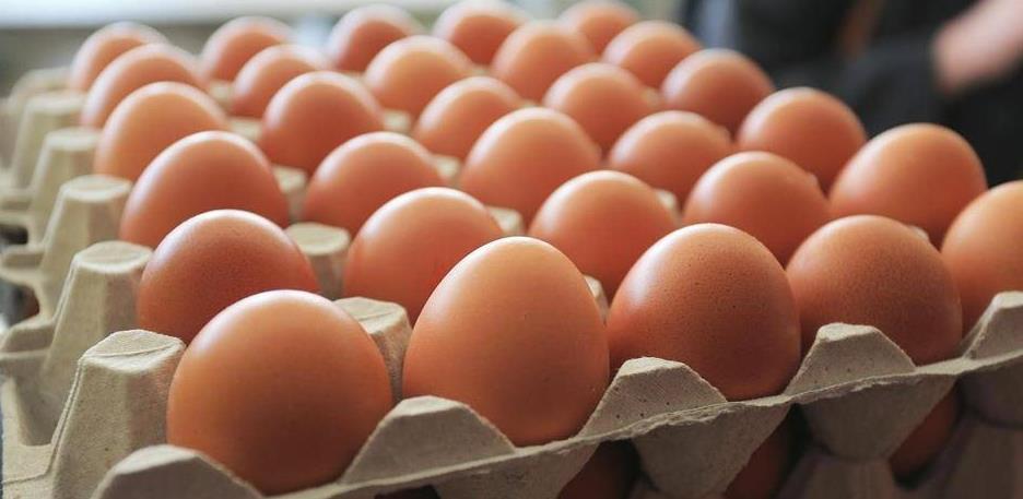Na jedno jaje iz uvoza, bh. firme izvezu osam jaja
