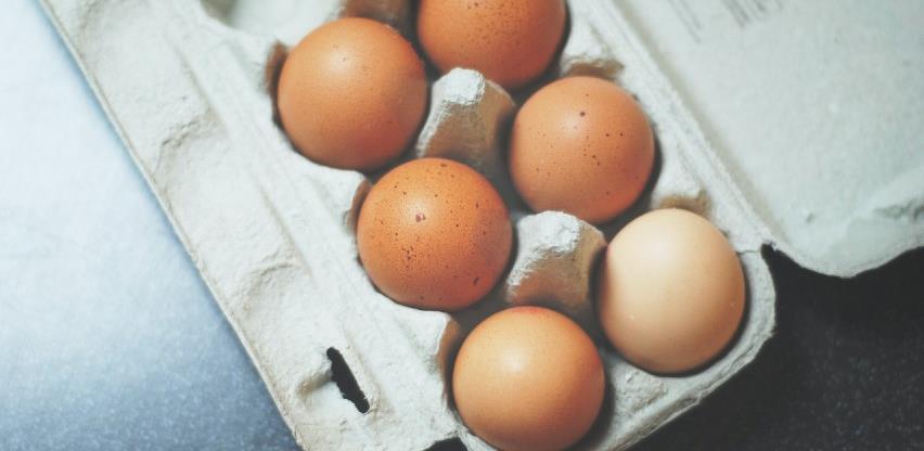 Intenzivan rad na realizaciji izvoza konzumnih jaja