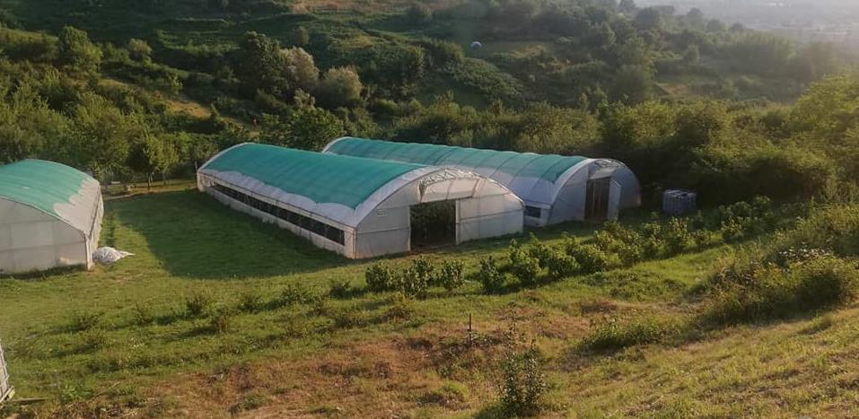 Poljoprivredni poligon na Mojmilu udvostručio proizvodnju