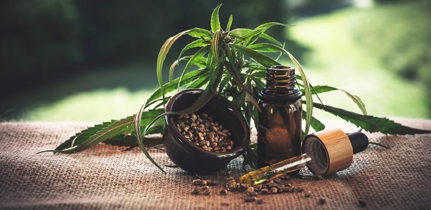 Sjeverna Makedonija legalizira marihuanu: Svaki građanin može da uzgoji 2-3 stabla kanabisa