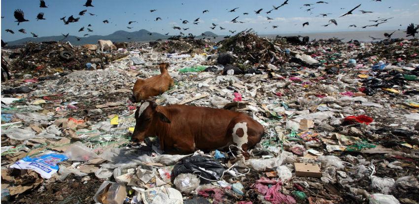 Meso ode, otpad ostaje