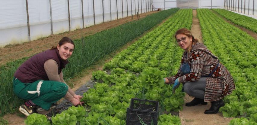 Priča o Hazimi Topčagić: Organska humanost u doba korone