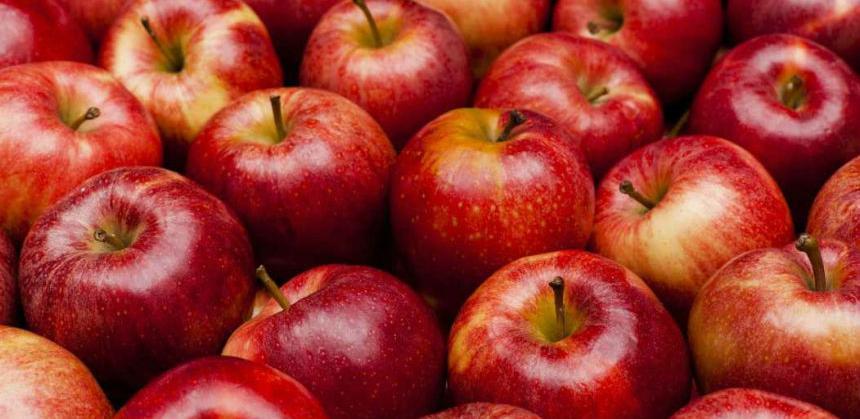 Jabuke u hladnjačama čekaju put za Rusiju